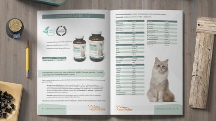 Projekt katalogu ofertowego A4